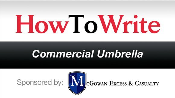 Umbrella Insurance Excess Liability Insurance From The Mcgowan